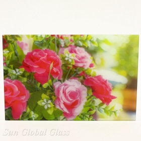 China 8mm digital printing glass,8mm digital photo printing glass,8mm digital ceramic printing glass factory